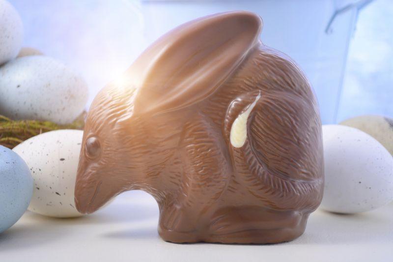 Čokoládový vačnatec Bilby