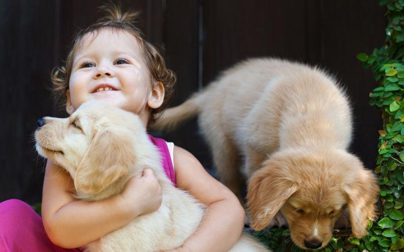Dítě objímá psa